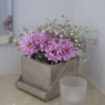 flores_009