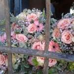 flores_014