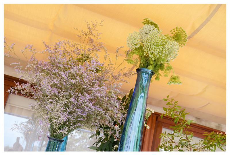 flores_020