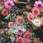 flores_022