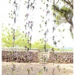 flores_029