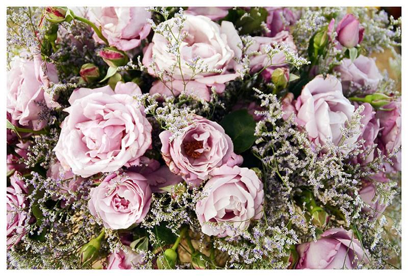 flores_031