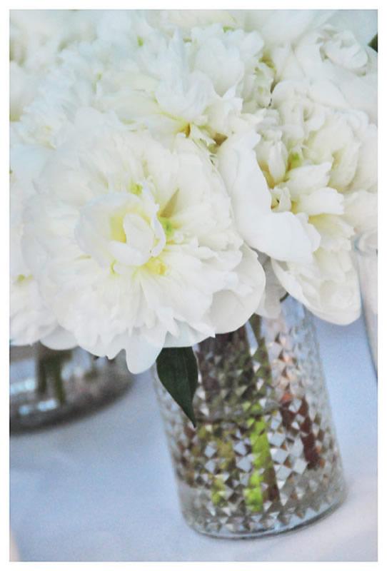 flores_037