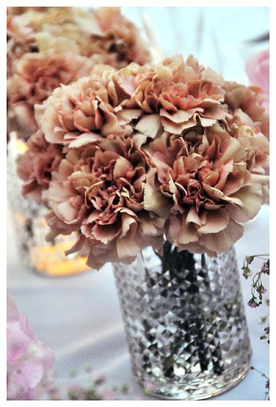 flores_039