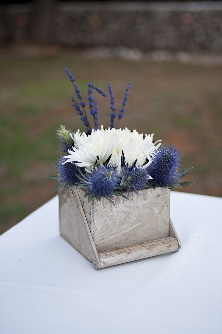 flores_002